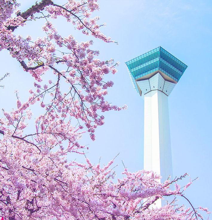 北海道(函馆)